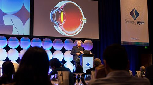 Dr Rick Wolfe speaks at the SynergEYES 2018 conference, Sydney, 30 June-1 July 2018